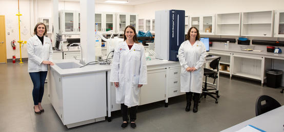 Vet med's new bacteriology lab will get faster results for veterinarians and animals across Alberta